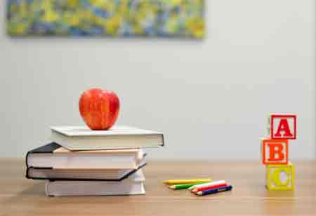 Primary Hurdles with School Management System